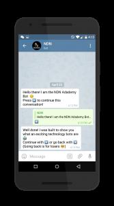 NDN Chatbot 2